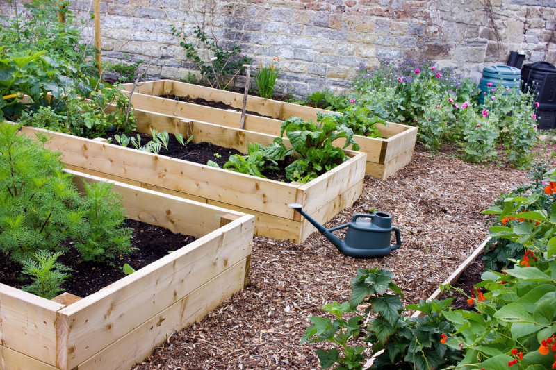 Cowell's Garden Centre offers you everything you need to build your own kitchen garden in Northumberland. Visit the nursery and get started today.